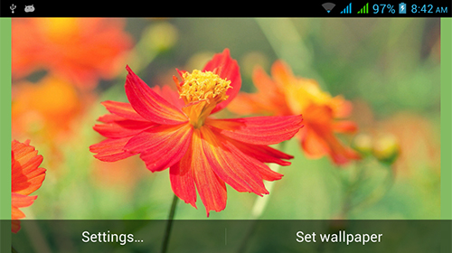 Baixar Nature HD by Live Wallpapers Ltd. - papel de parede animado gratuito para Android para desktop.