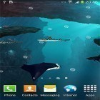 Baixar papel de parede animado Sharks 3D by BlackBird Wallpapers para desktop de celular ou tablet.